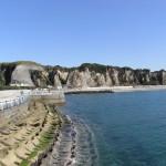 江口浜海浜公園|日置市観光協会