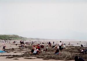 吹上浜・潮干狩り|日置市観光協会