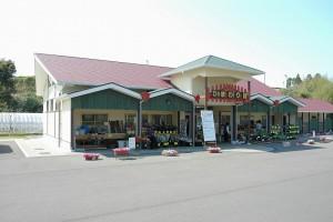 ひまわり館|日置市観光協会